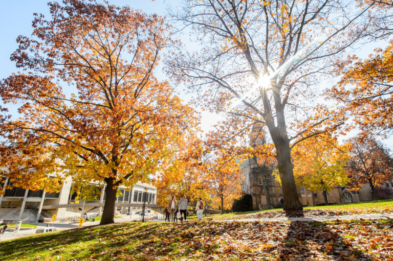 Pedestrians walk on Bascom Hill surrounded by fall foliage.