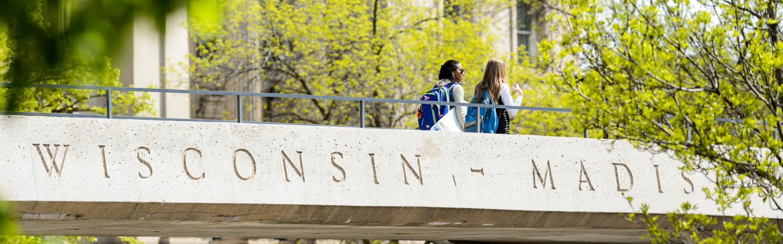 Students are pictured crossing the North Park Street pedestrian bridge.