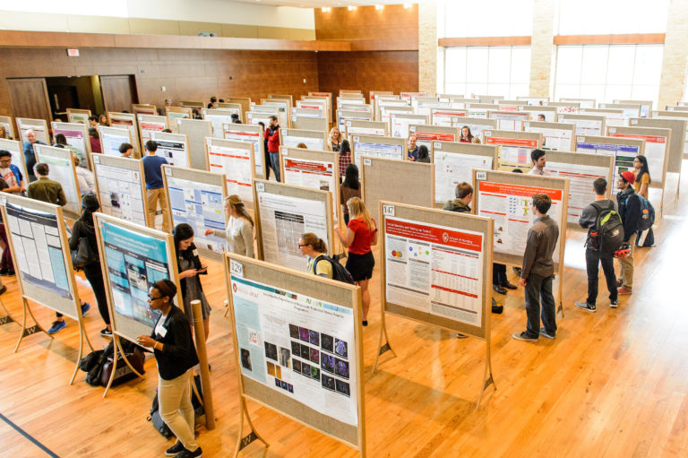 Students present their research at the Undergraduate Research Symposium.